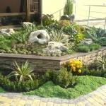 Устройство каменистых садов